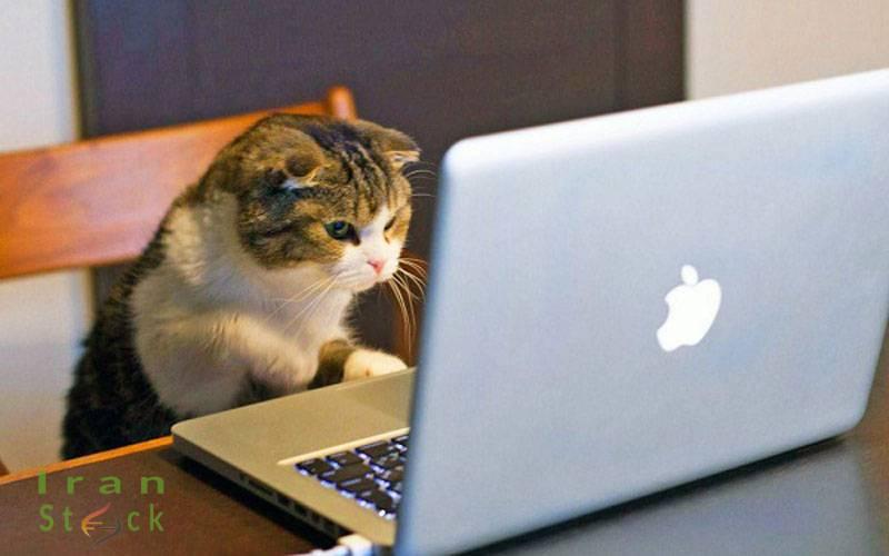 آسیب زدن به لپ تاپ